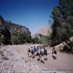 Trekking the Waterkloof Trail