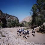 Random image: 2002/08/11 - Waterkloof Trail