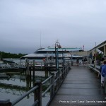 Random image: 2007/06/19 - Port Douglas