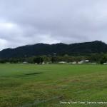 Random image: 2007/06/20 - Walking in Cairns