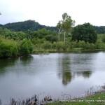 Random image: 2007/06/20 - Centenary Lakes