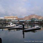 Random image: 2007/06/24 - Darling Harbour
