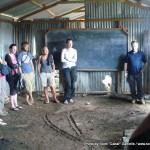 Random image: 2009/08/24 - Ngumo Primary School