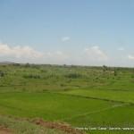 Random image: 2009/08/25 - Ugandan Scenery