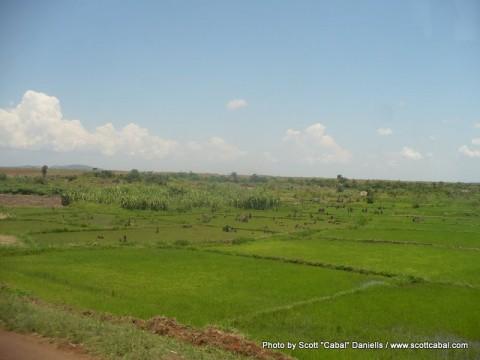 Ugandan Scenery