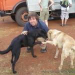 Random image: 2009/08/26 - 2 Dogs