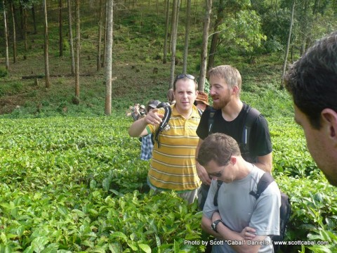 A few of us in the tea plantation