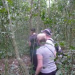 Random image: 2009/08/27 - Trekking for Chimps