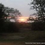 Random image: 2009/09/03 - Sunrise