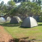 Random image: 2009/09/04 - Camping at Adrift