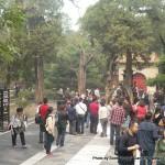 Random image: 2010/10/07 - Forbidden City gardens