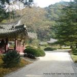 Random image: 2010/10/13 - Pohyon Temple