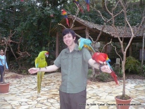 Me and some Parrots