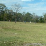 Random image: 2012/02/08 - Football
