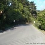Random image: 2012/02/10 - Walking in Costa Rica