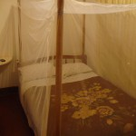 Random image: 2012/02/28 - Entebbe Backpackers