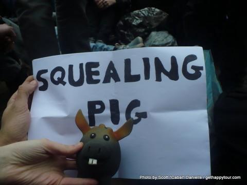 Squealing Pig!