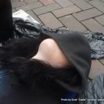 Random image: 2012/04/13 - Fiona sleeping