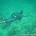 Random image: 2014/03/06 - Mike Spearfishing