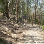 Random image: 2014/03/10 - Rang Hill Exercise Area