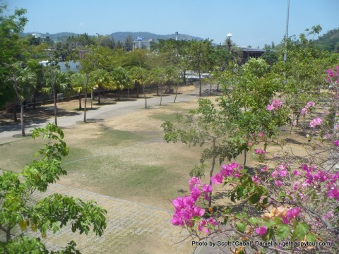 The park again