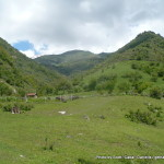 Random image: 2015/05/27 - Kyrgyz scenery