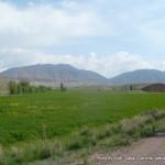 Random image: 2015/05/30 - Kyrgyz scenery