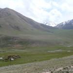 Random image: 2015/05/30 - Mountains