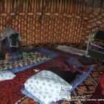 Random image: 2015/06/01 - Inside the Yurt
