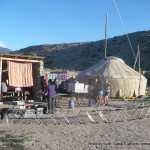 Random image: 2015/06/02 - Yurt Camp