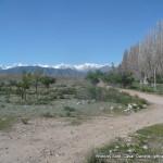Random image: 2015/06/03 - Kyrgyz scenery