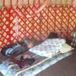 Random image: 2015/06/03 - In the yurt