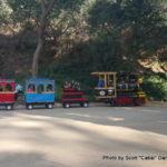 Random image: 2016/01/25 - The little train